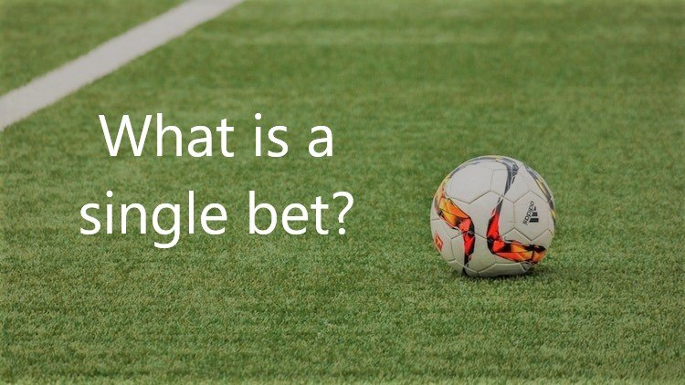 what-is-a-single-bet